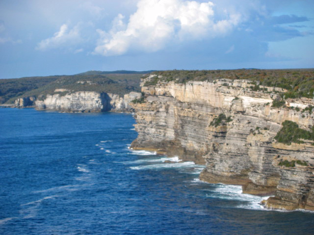 Currarong Sea Cliffs